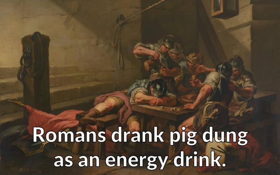 Romans Drank Pig Dung