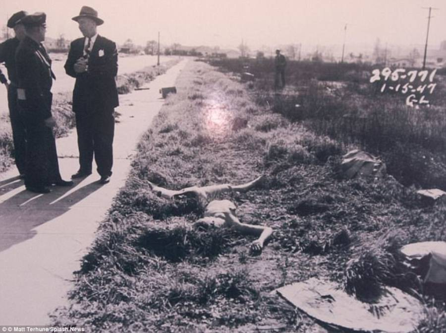 Black Dahlia Uncovered