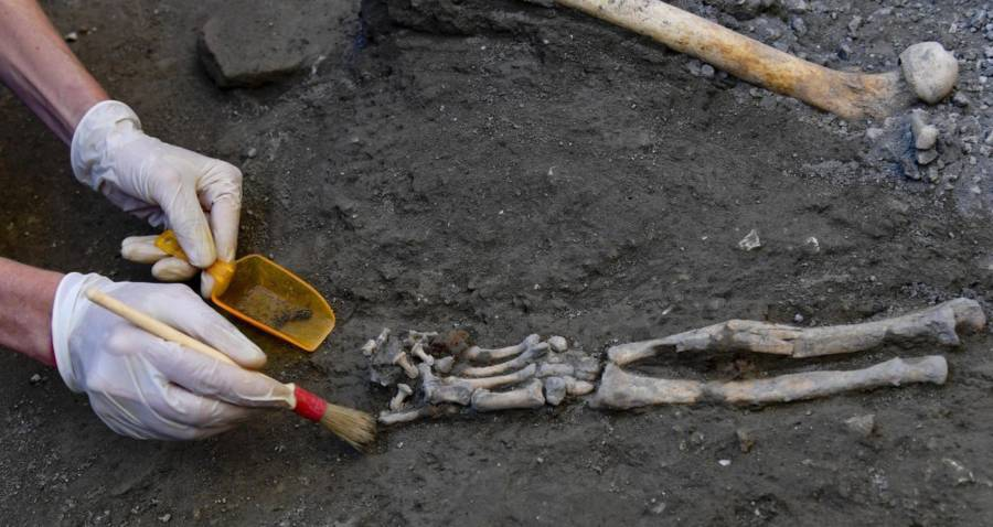Excavating Pompeii Skeleton