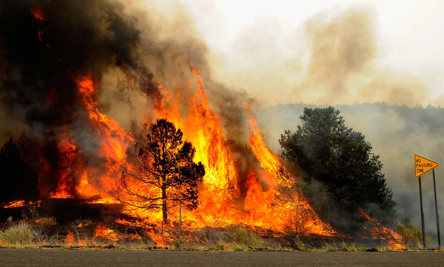 Wildfire Az