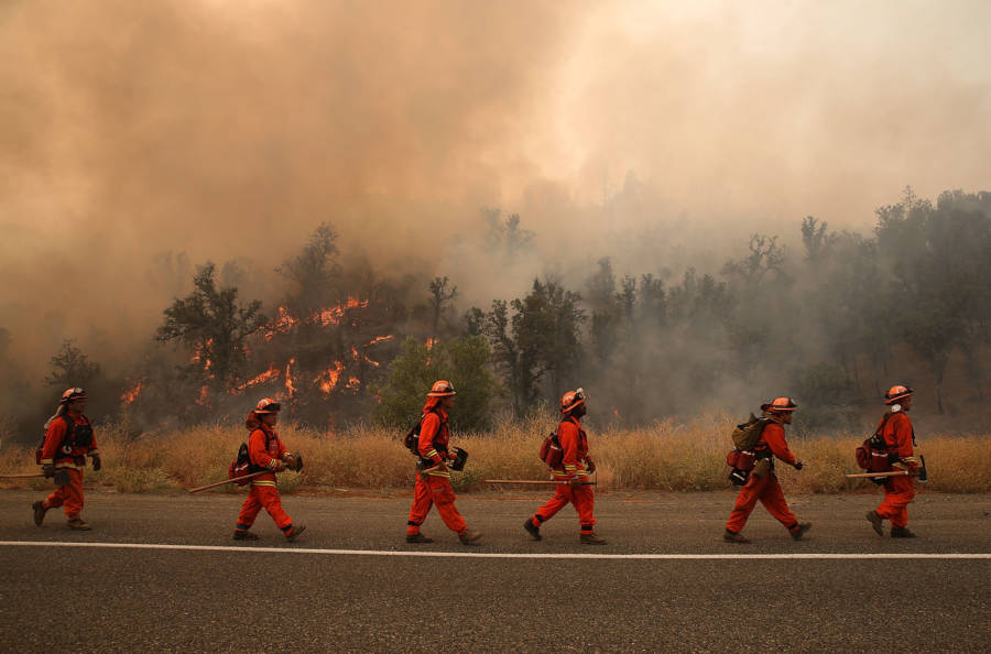 California Fire Inmates