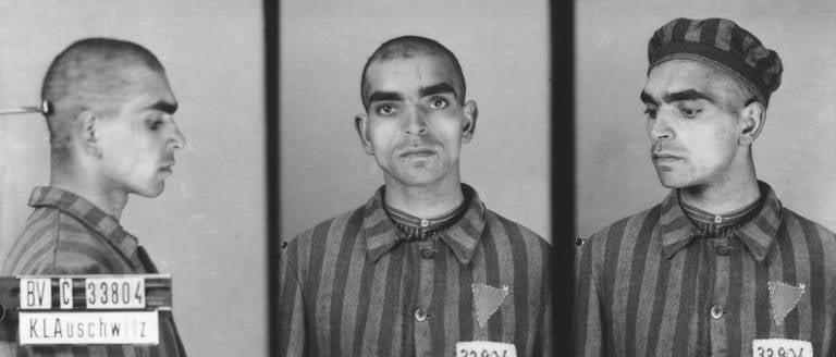 Vinzent Daniel Auschwitz