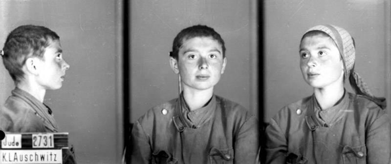 Jewish Prisoner 2371 Auschwitz