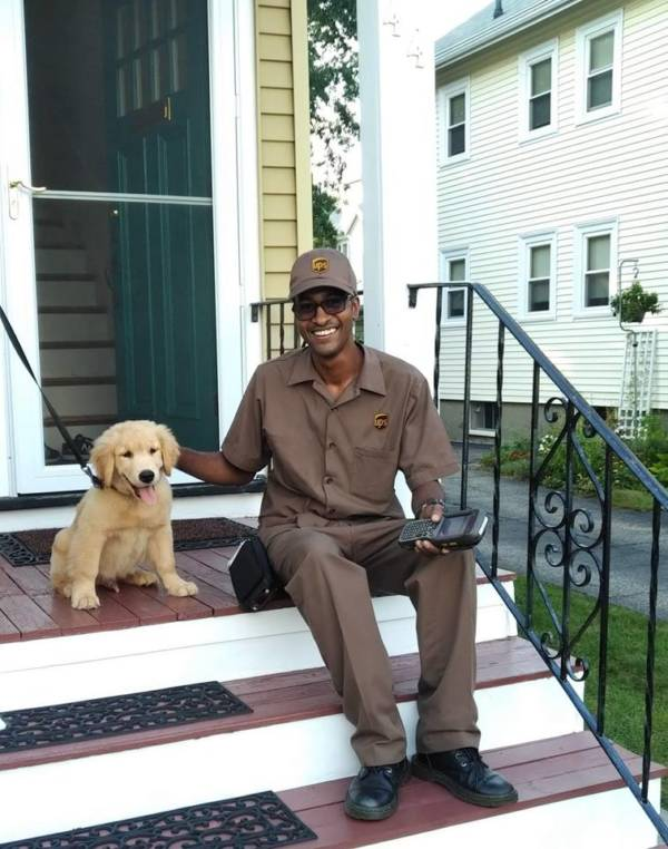 UPS Delivery Man And Golden Retriever Puppy