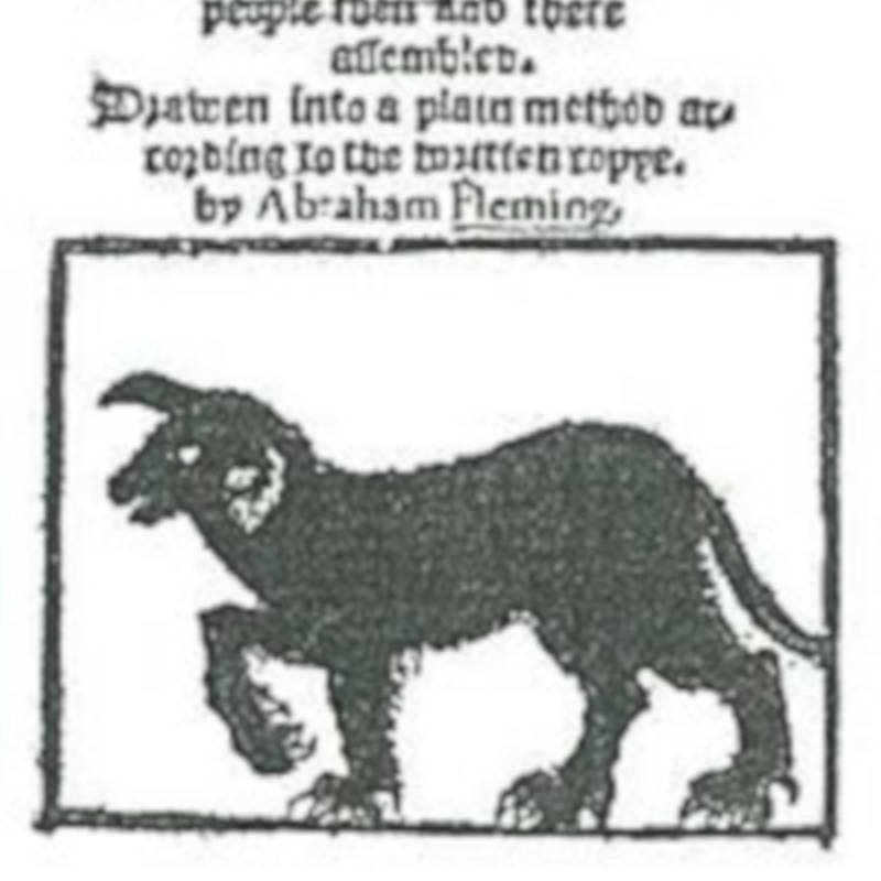 Black Shuck Pamphlet