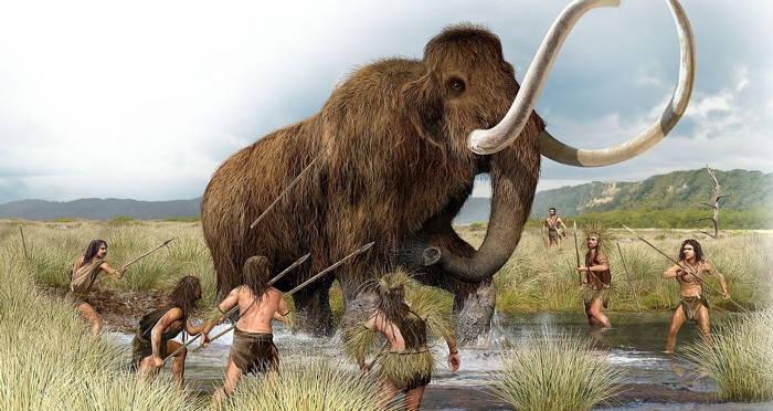 25,000-Year-Old Mammoth Rib Found Pierced With Man-Made Flint Arrowhead