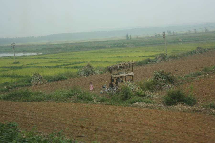North Korean Farmland