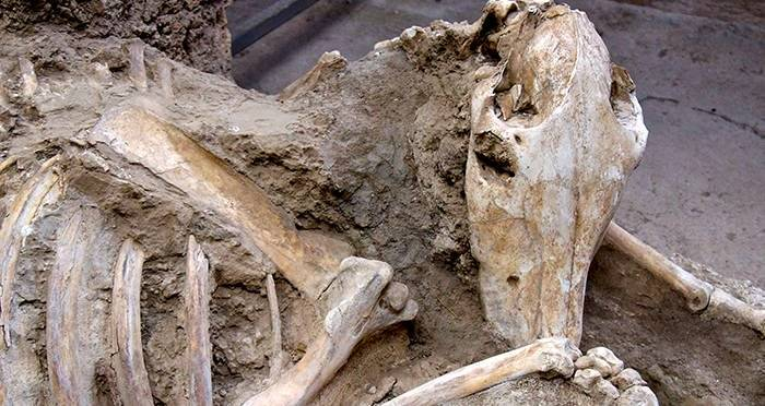 Image Result For Pompeii