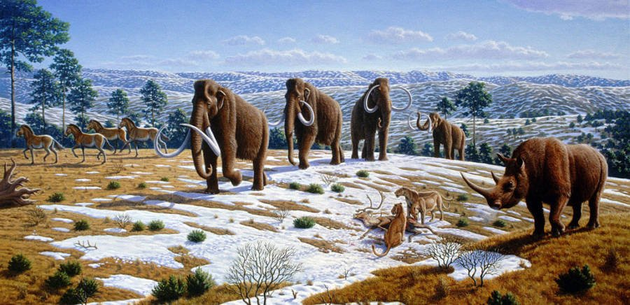 Woolly Mammoth Painting