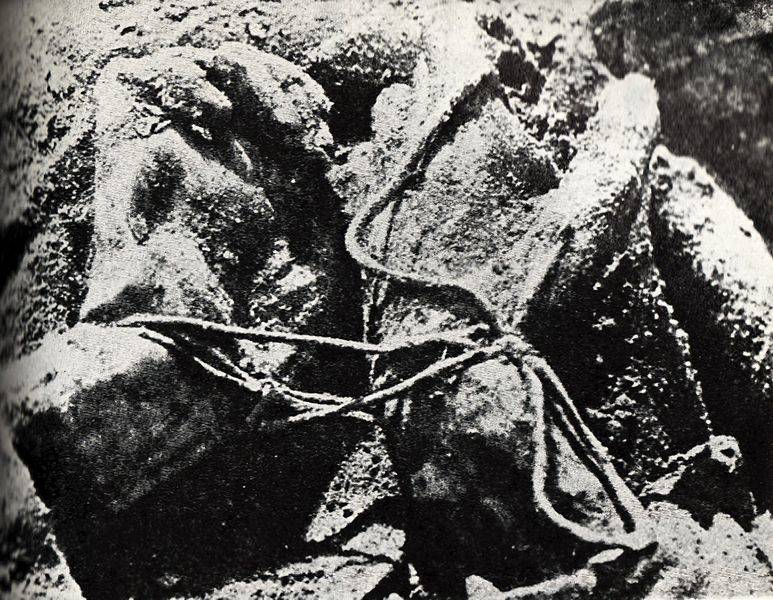 Katyn Massacre 1943 Exhumation