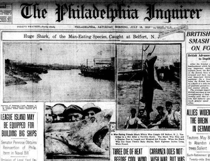 Image result for 1916 shark attacks