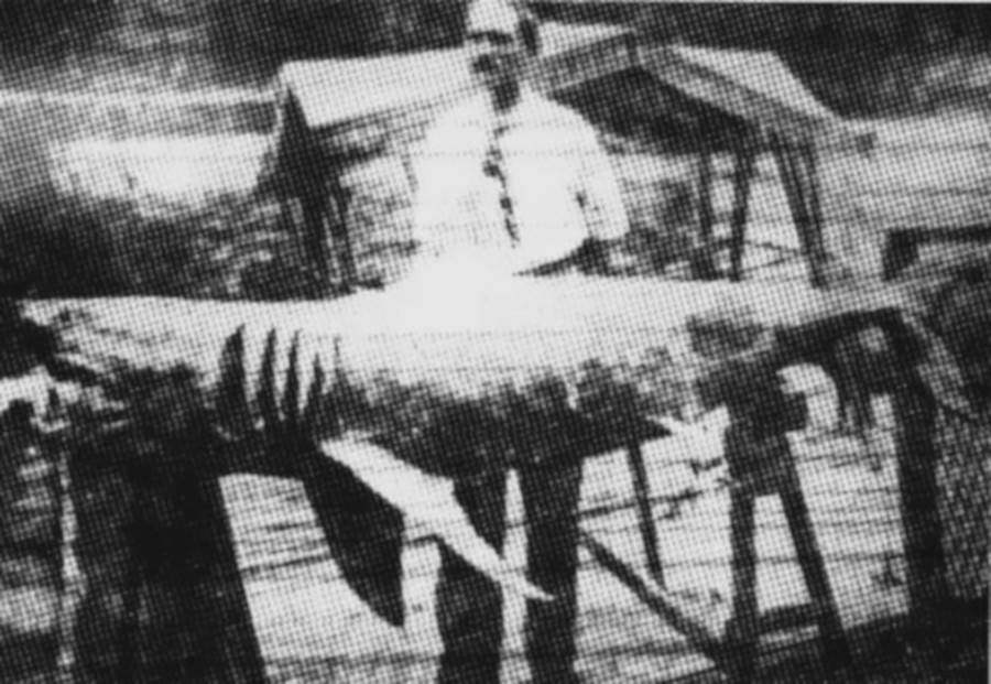 Schleisser With Shark