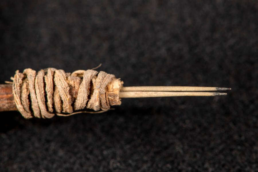 2,000-Year-Old Tattoo Gun Is The Oldest In Tool In Western North America
