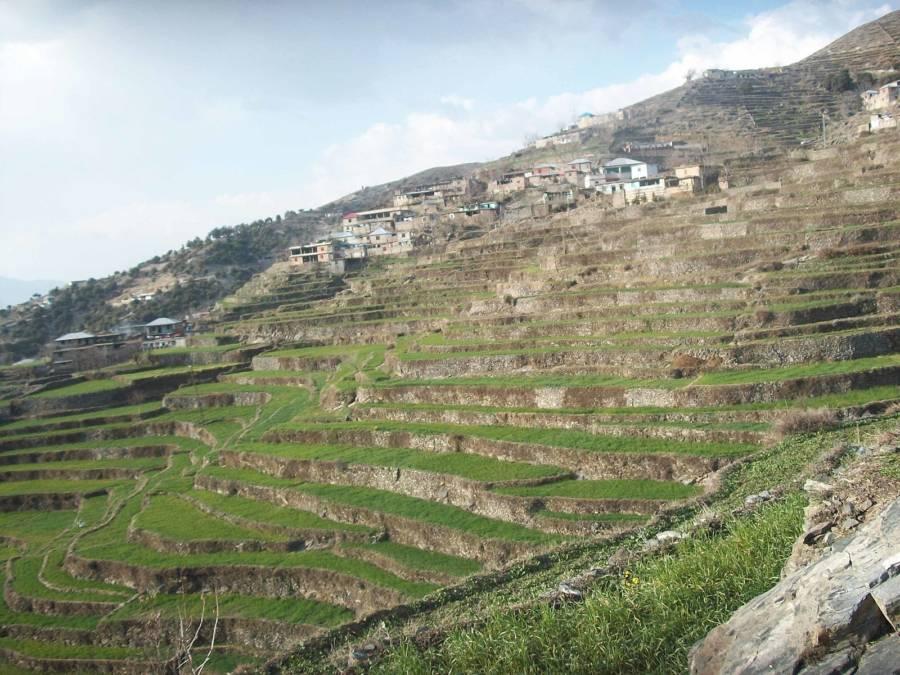 Cerro Baul Modern Times