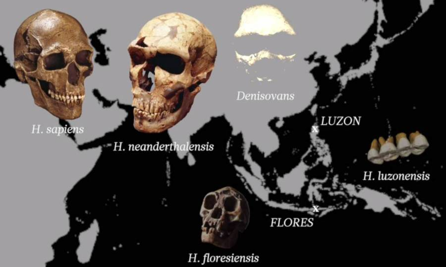 Map Of Early Hominins