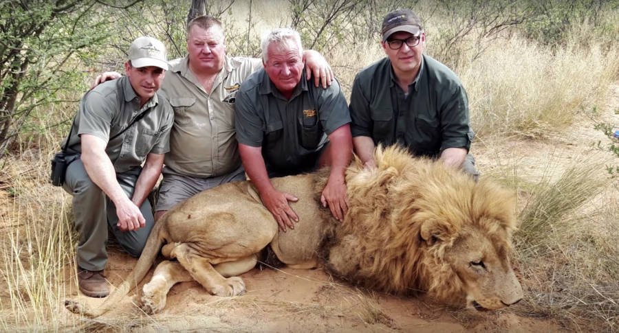 Trophy Hunters South Africa