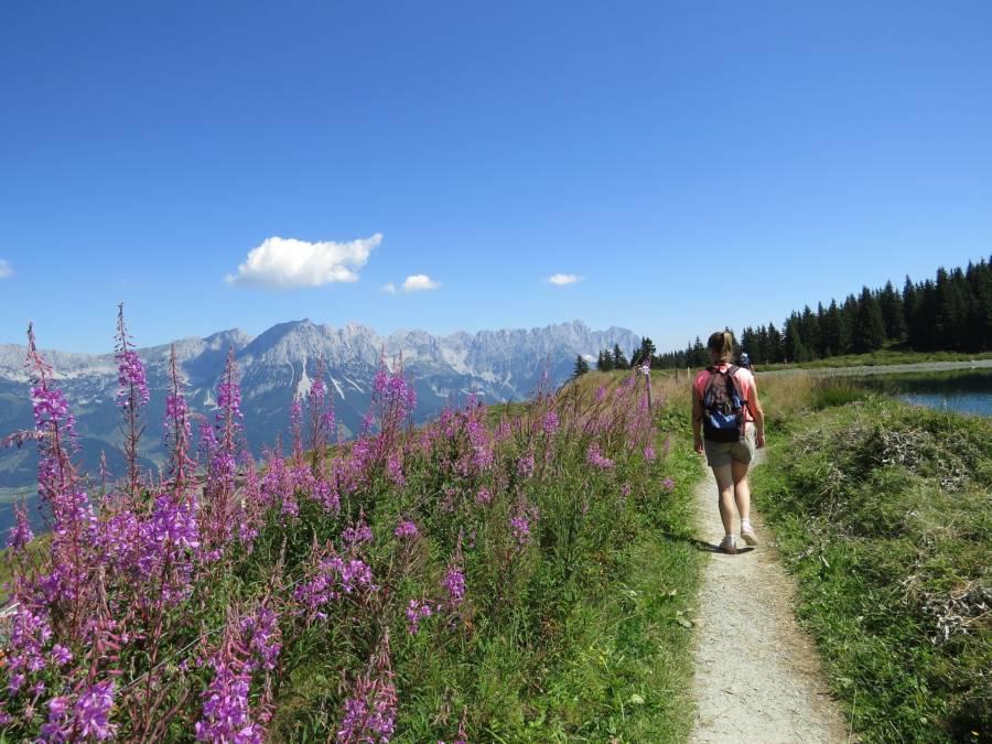 Backpacker In Austria