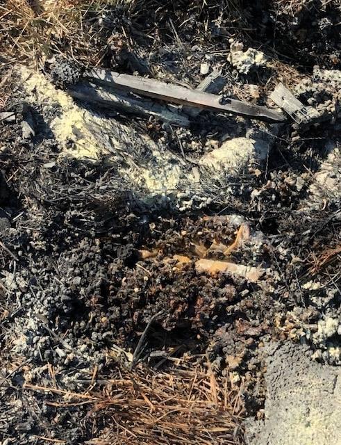 Colmeia queimada