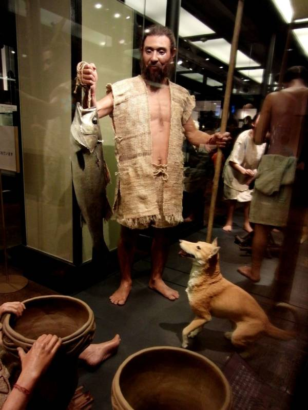 Jomon Man In Exhibit
