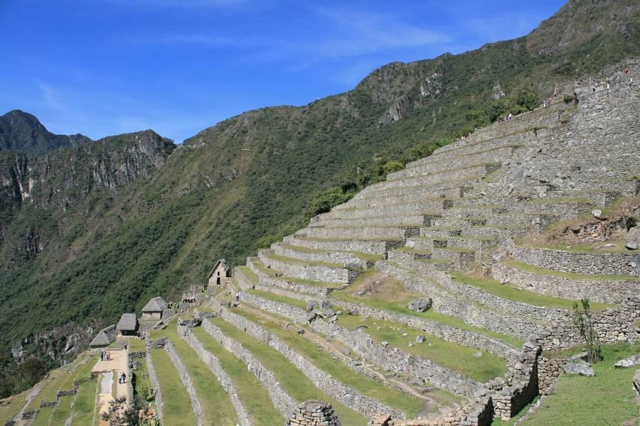 Machu Picchu Terrace Steps