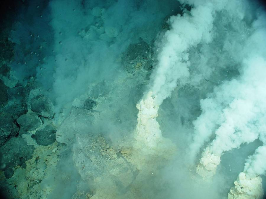 Mariana Trench Vents