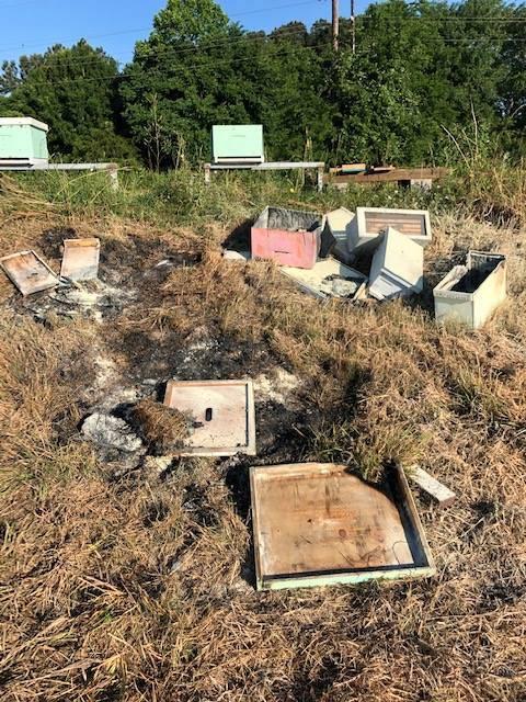 Vandalized Beehive