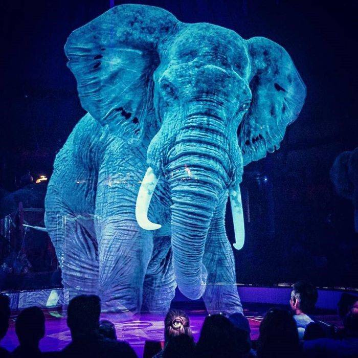 Blue Circus Roncalli Elephant
