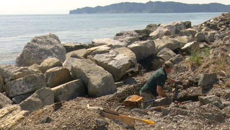 Cap Des Rosiers Dig Site