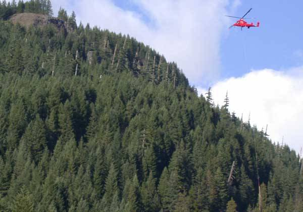 Helicopter Flying Over A Forest