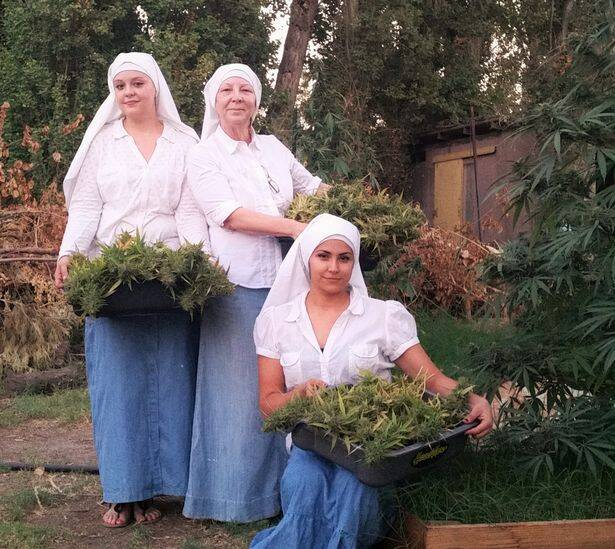 Three Nuns With Baskets Of Weed