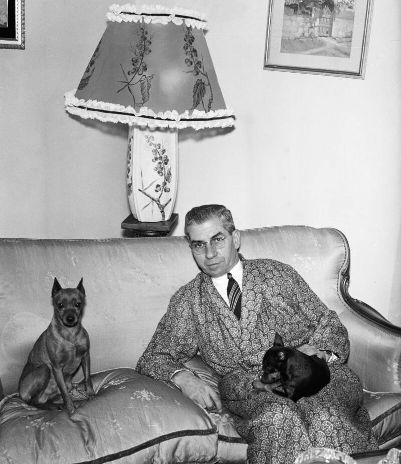 Lucky Luciano In Robe With Dogs On Sofa