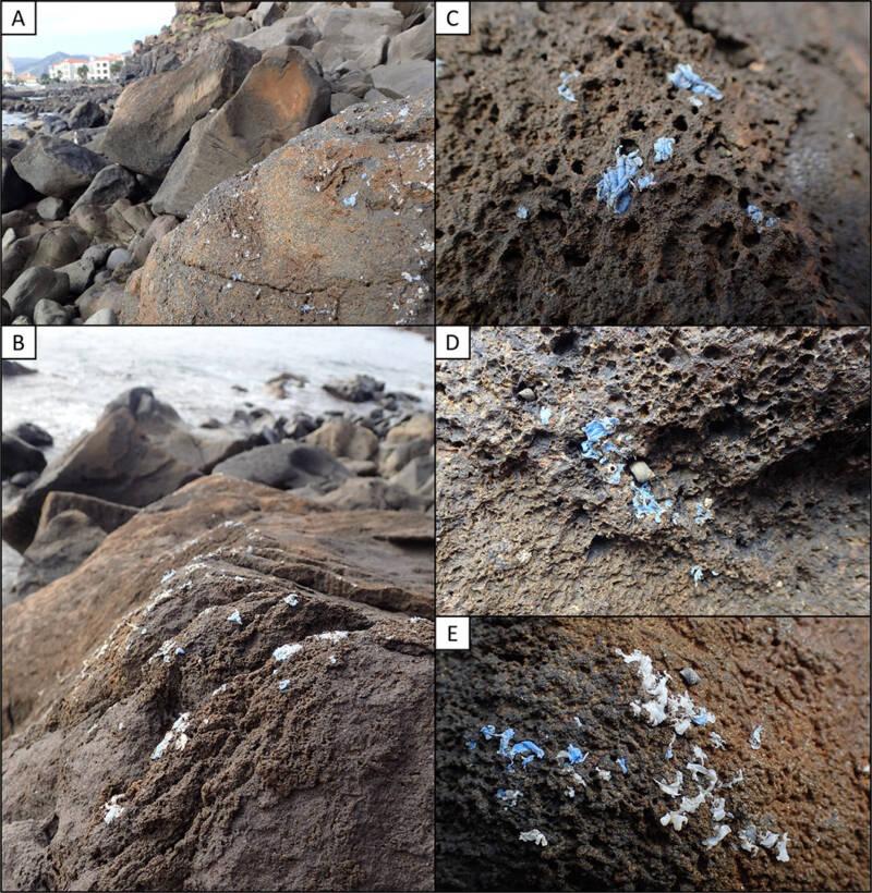 Plasticrust Evidence
