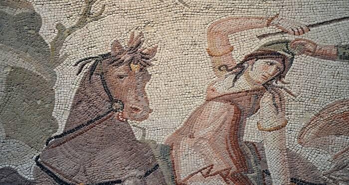 Amazonian Mosaic