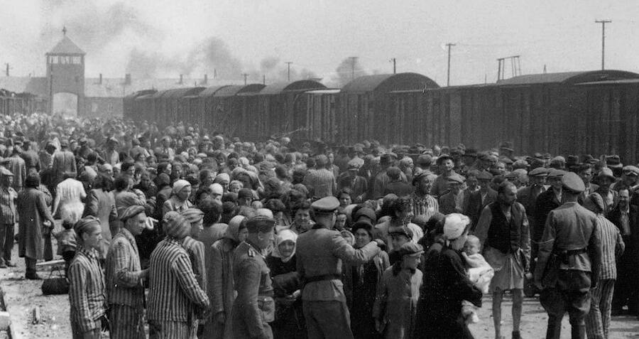 Selection At Auschwitz In 1944