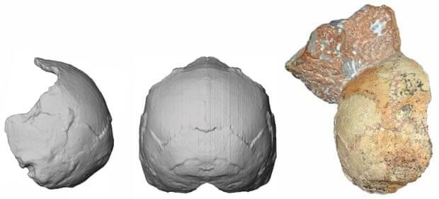Apidima Skull And Virtual Model