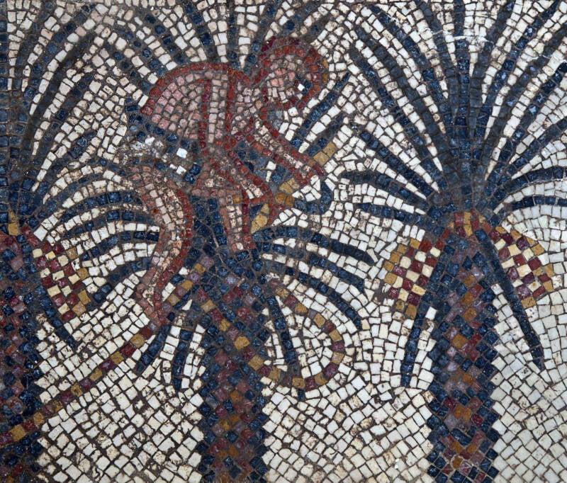 Elim Mosaic