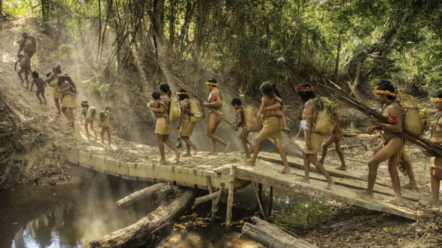 The Guajá In The Amazon