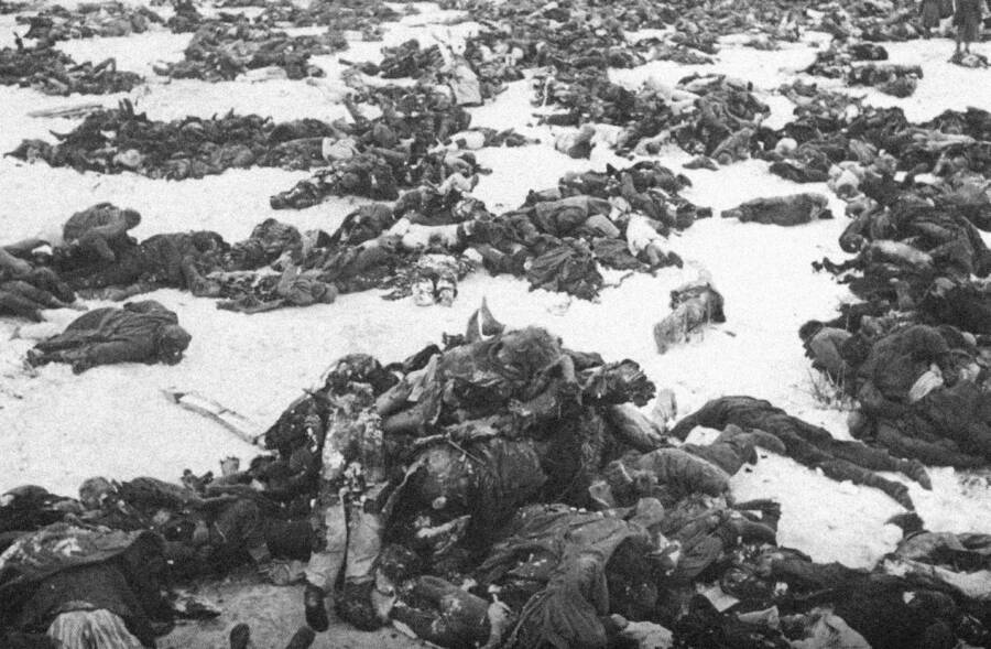 Dead Bodies On The Eastern Front