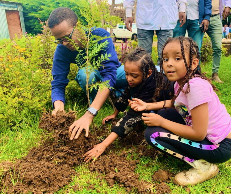 Ethiopia Breaks World Record With 353 Million Trees Planted