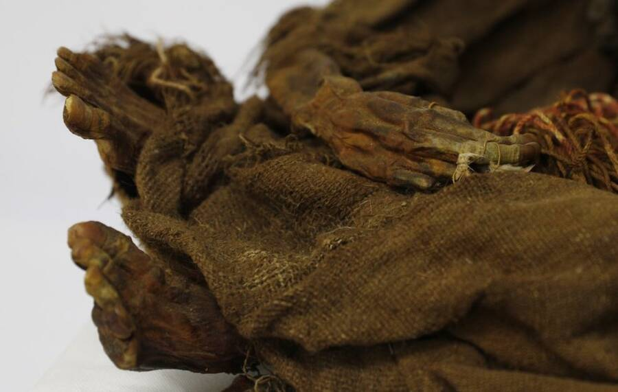 Feet And Hands Of Inca Mummy