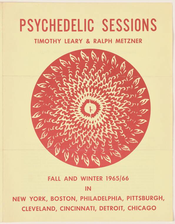 High Priest Of LSD