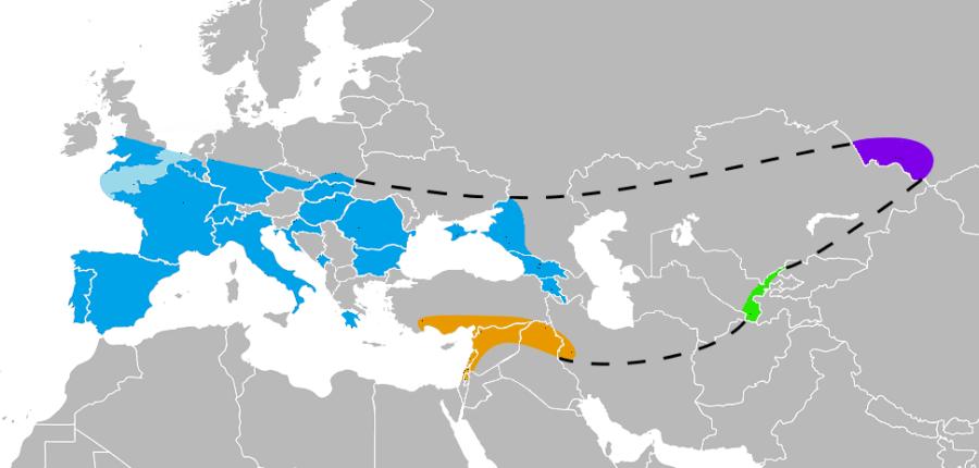 Map Of Skeletal Remains Of Human Species