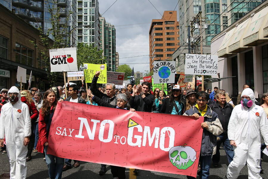 March Against Monsanto Protestors