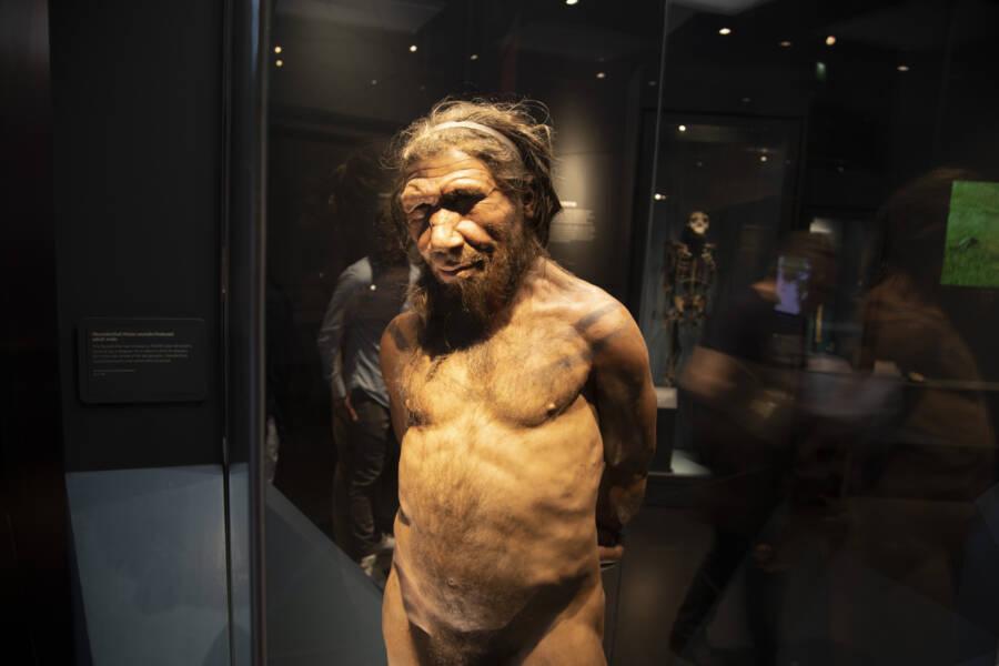 Neanderthal Man Reproduction In London