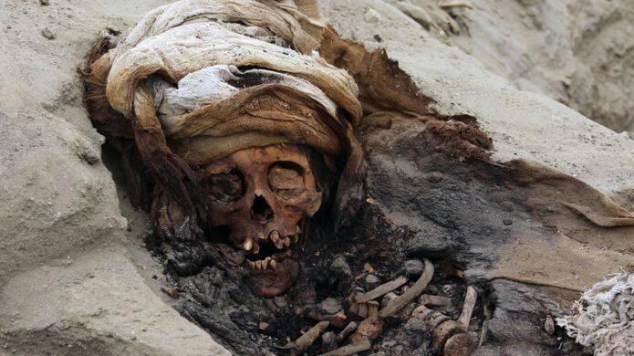 Skull Of A Peruvian Child Sacrifice Victim