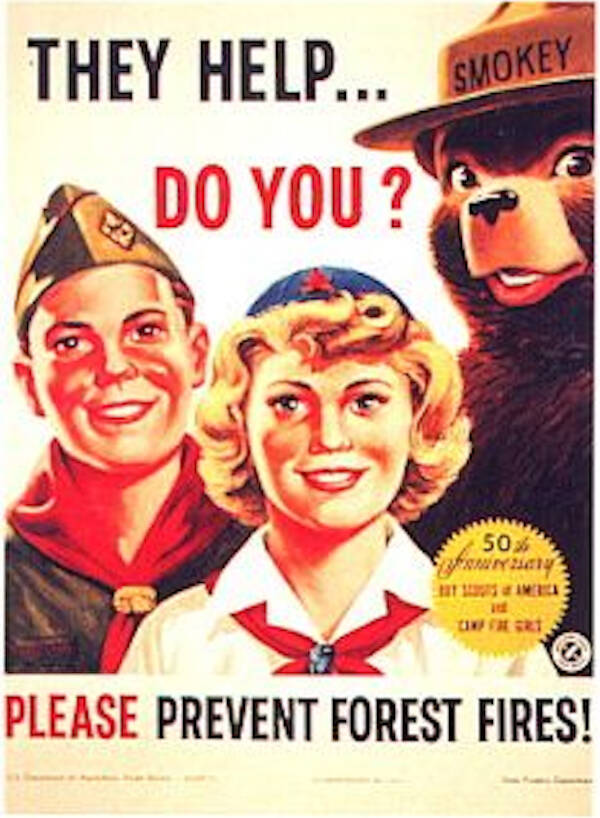 Smokey The Bear Boy Scout Ad
