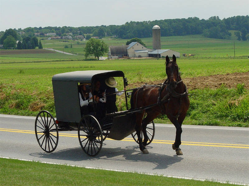 Amish Family Riding Buggy