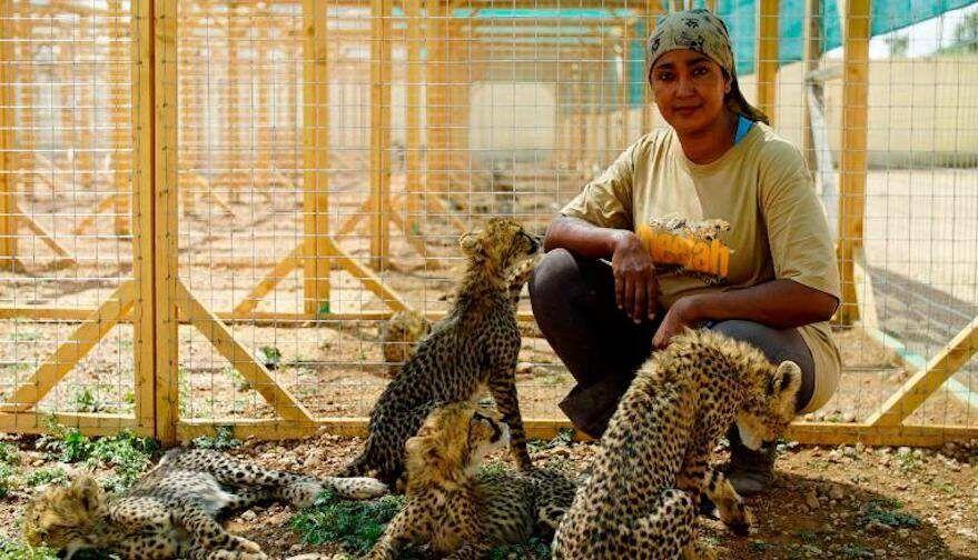 Cheetah Rescuer