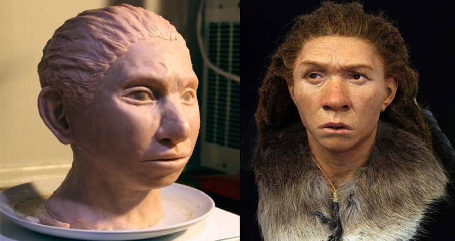 Denisovan And Neanderthal Reconstruction