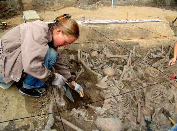 Archaeologist Excavating The Yaroslav Graves